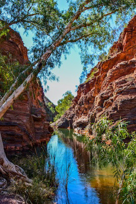 11-Day Perth - Broome Tour